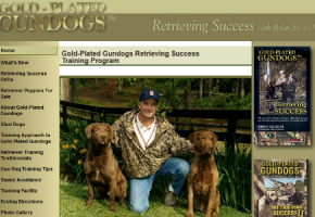 Gold-Plated Gundogs