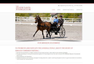 eileen-davis-foundation-web-site-example