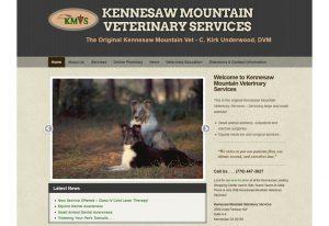 kmvs-web-site-example